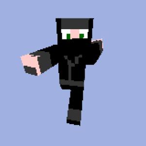 Ninja Minecraft