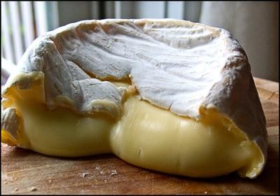 A découvrir – Le site sur les fromages : www.fromager.net